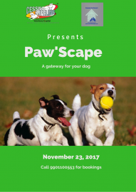 Paw'Scape - A gateway for your dog